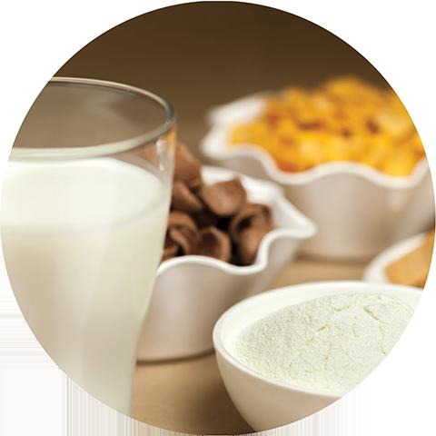 what_we_do_edelmak_milk_powder_machinery_turnkey